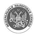 Формы бухгалтерской отчетности в налоговую.